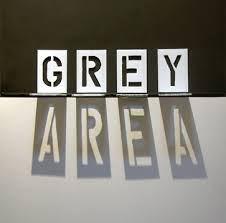 TBI's legal advice- immigration law is a ''grey area